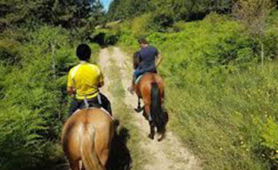 9-escursione-cavallo